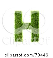 Grassy 3d Green Symbol Capital H by chrisroll