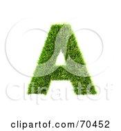 Grassy 3d Green Symbol Capital A