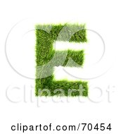 Grassy 3d Green Symbol Capital E by chrisroll