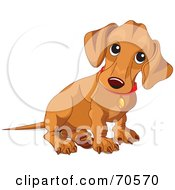 Royalty Free RF Clipart Illustration Of A Beige Wiener Dog Puppy Sitting