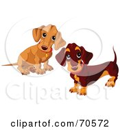 Royalty Free RF Clipart Illustration Of Two Dachshund Puppies