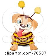 Cute Puppy Wearing A Bee Costume