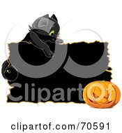 Black Kitten Looking Over A Black Sign At A Halloween Pumpkin
