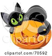 Cute Black Kitten Curled Up On Top Of A Halloween Pumpkin