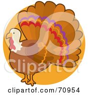 Royalty Free RF Clipart Illustration Of A Thanksgiving Turkey Bird With His Tail Fanned by Maria Bell