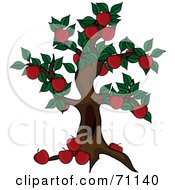 Royalty Free RF Clipart Illustration Of A Beautiful Apple Tree Abundant With Fruit by Pams Clipart