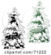 Royalty Free RF Clipart Illustration Of An Evergreen Tree Flocked In Snow With A Black And White Copy Version 2