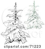 Royalty Free RF Clipart Illustration Of An Evergreen Tree Flocked In Snow With A Black And White Copy Version 3