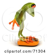 Royalty Free RF Clipart Illustration Of A 3d Green Poison Dart Frog Standing On A Scale Pose 2