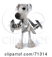 Royalty Free RF Clipart Illustration Of A 3d Jack Russell Terrier Pooch Character Lifting Weights by Julos