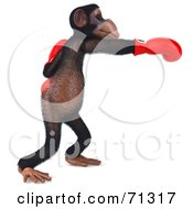 Royalty Free RF Clipart Illustration Of A 3d Chimp Character Boxing Pose 2