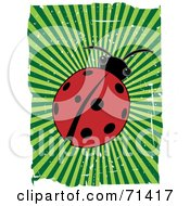 Royalty Free RF Clipart Illustration Of A Red Ladybug Beetle With Green Bursting Grunge And White Edges by mheld
