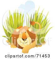 Royalty Free RF Clipart Illustration Of A Friendly Male Lion Resting In Tall Grass by Qiun