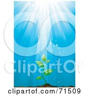 Royalty Free RF Clipart Illustration Of Magical Light Shining Down On A Green Plant