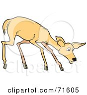 Royalty Free RF Clipart Illustration Of A Shy Young Deer by Lal Perera