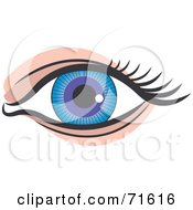 Royalty Free RF Clipart Illustration Of A Blue And Purple Eye by Lal Perera