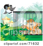Royalty Free RF Clipart Illustration Of A Magpie Flying By A Male Lion In A Cage by Lal Perera
