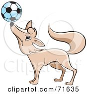 Royalty Free RF Clipart Illustration Of A Fox Balancing A Soccer Ball On His Nose by Lal Perera