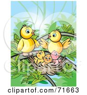 Royalty Free RF Clipart Illustration Of A Bird Family Gathered At A Nest by Lal Perera
