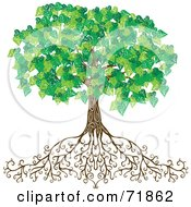 Royalty Free RF Clipart Illustration Of A Mature Green Tree With Deep Roots