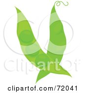 Two Green Pea Pods With Curly Tendrils