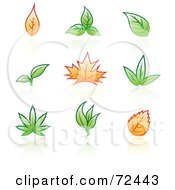 Royalty Free RF Clipart Illustration Of A Digital Collage Of Green And Orange Autumn And Spring Leaves