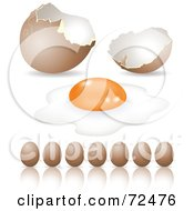 Digital Collage Of Brown Organic Eggs In A Row And A Cracked Shell