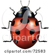Royalty Free RF Clipart Illustration Of A 3d Red Ladybug With Perfect Black Spots by cidepix