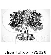 Royalty Free RF Clipart Illustration Of A Black And White Potted Bonsai Plant