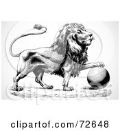Royalty Free RF Clipart Illustration Of A Black And White Lion Resting Its Paw On Top Of A Ball