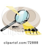 Royalty Free RF Clipart Illustration Of A Magnifying Glass Casting Burning Light On An Ant