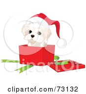 Royalty Free RF Clipart Illustration Of A West Highland White Terrier Puppy Wearing A Santa Hat And Popping Out Of A Christmas Gift Box