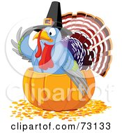 Royalty Free RF Clipart Illustration Of A Cute Thanksgiving Turkey Wearing A Pilgrim Hat And Sitting In A Pumpkin by Pushkin