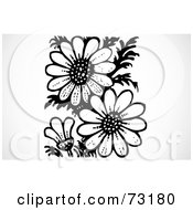 Royalty Free RF Clipart Illustration Of A Black And White Daisy Flower Garden by BestVector
