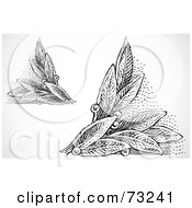 Royalty Free RF Clipart Illustration Of A Digital Collage Of Black And White Leaf Corner Designs by BestVector