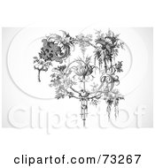 Royalty Free RF Clipart Illustration Of A Black And White Vintage Spiraling Elegant Floral Branch