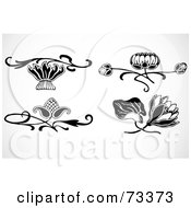Digital Collage Of Black And White Lotus And Other Flower Elements