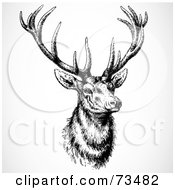 Royalty Free RF Clipart Illustration Of A Black And White Buck With Large Antlers by BestVector