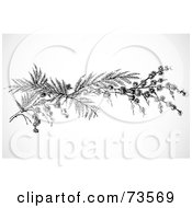 Royalty Free RF Clipart Illustration Of A Black And White Twig Branch by BestVector