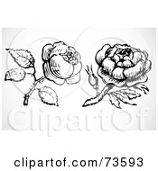 Royalty Free RF Clipart Illustration Of A Digital Collage Of Two Black And White Roses And Stems