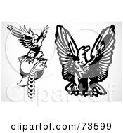 Royalty Free RF Clipart Illustration Of A Digital Collage Of Black And White Eagles One On A Helmet by BestVector