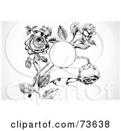 Royalty Free RF Clipart Illustration Of A Black And White Banner And Frame In A Rose Bush