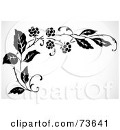 Royalty Free RF Clipart Illustration Of A Black And White Floral Blackberry Corner Border by BestVector