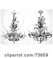 Royalty Free RF Clipart Illustration Of A Digital Collage Of Ornate Black And White Calla And Day Lily Chandeliers by BestVector
