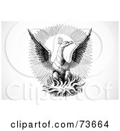 Royalty Free RF Clipart Illustration Of A Black And White Eagle On A Nest In Front Of The Sun by BestVector