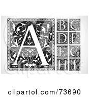 Digital Collage Of Black And White Elegant Vintage Floral Letter Squares A Through I
