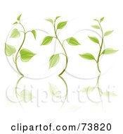Royalty Free RF Clipart Illustration Of A Digital Collage Of Three Sprouting Seedling Plants With Reflections by elena