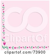 Pink Background With Bottom And Left Pink Tulip Borders