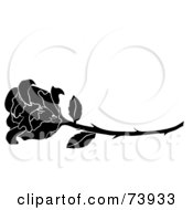 Royalty Free RF Clipart Illustration Of A Long Stemmed Black And White Rose