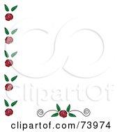 Rose Edge And Bottom Scoll Design Element On White